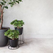 Flower Pot Wire Pot