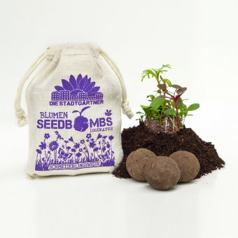 Seedbombs in a Linen Bag Butterfly Delight