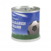Canned Soccer Grass
