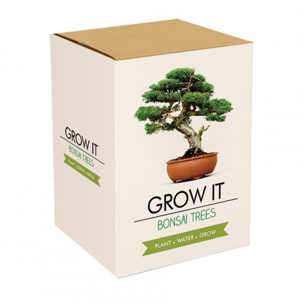 Grow your own Bonsai Trees