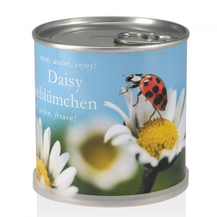 Daisy in Can