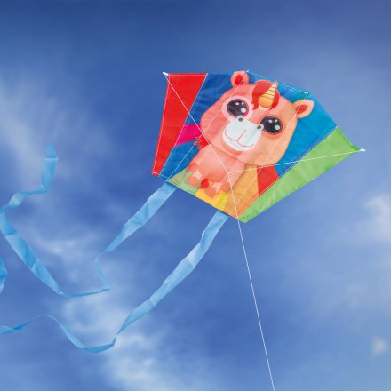Donkey Products Mini Kite in a Can Rainbow Lily
