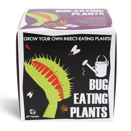 Plant Set Bug-Eating-Plants