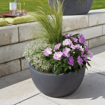 Scheurich Planter 252 Wave Globe Bowl