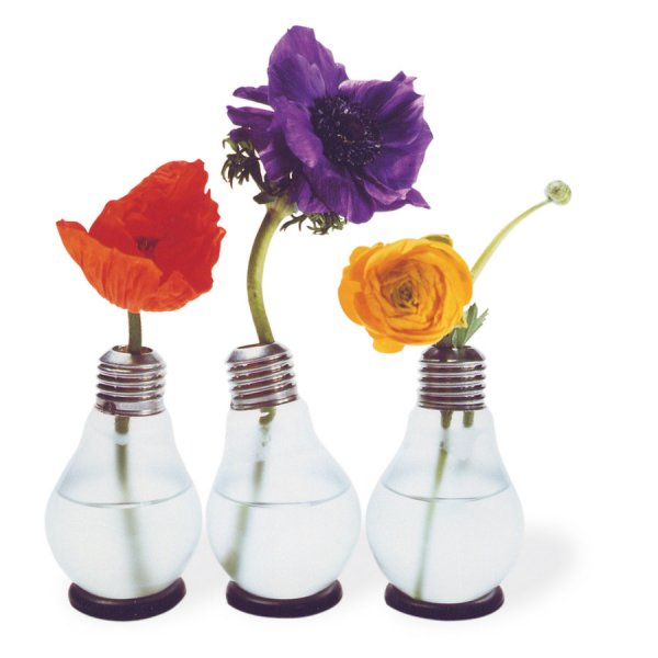 corpus delicti Blühbirne - Light Bulb Vase Set of 3