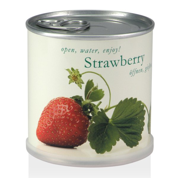 Strawberry in Can