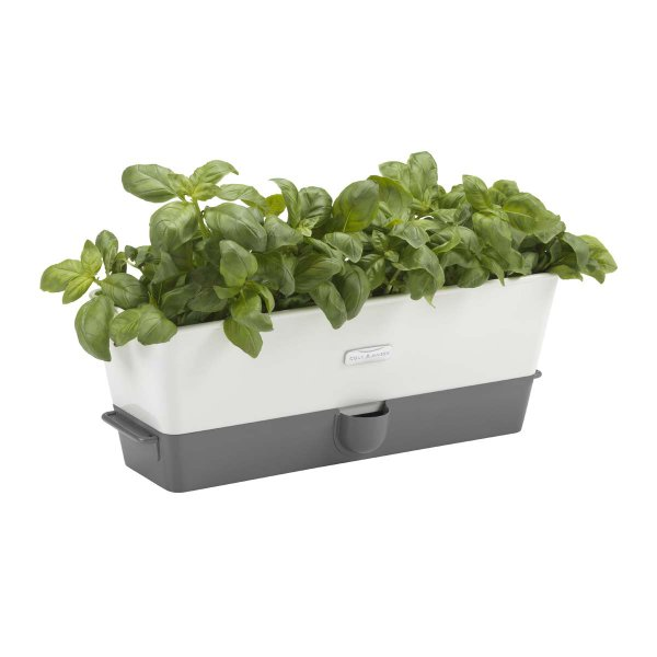 Cole & Mason Self-Watering Herb Keeper, Triple