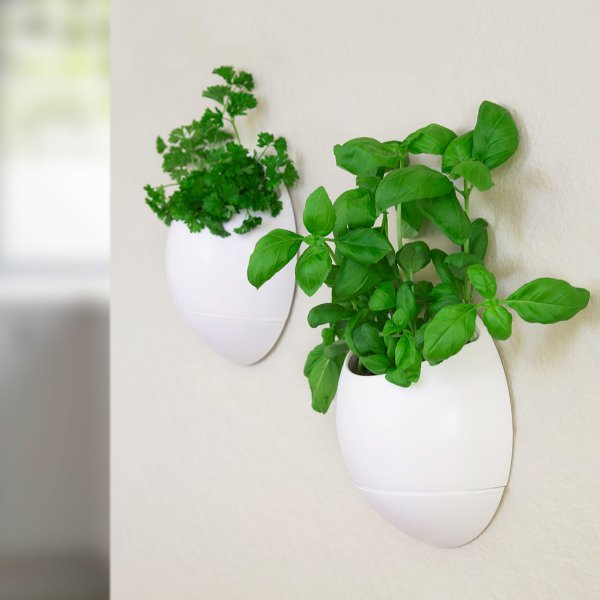 Thumbs Up Self Watering Herb Pot Eco Pod Set of 2