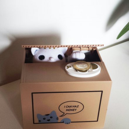 Cat Money Box I can haz money