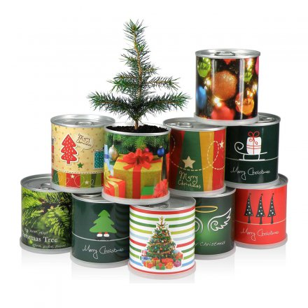 Christmas-Tree Merry Christmas in a can
