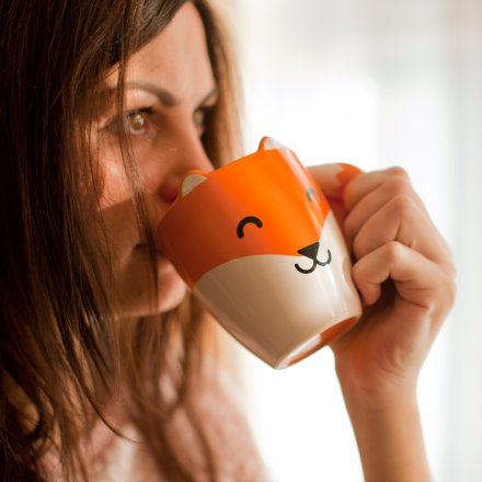 Thumbs Up Fox Mug
